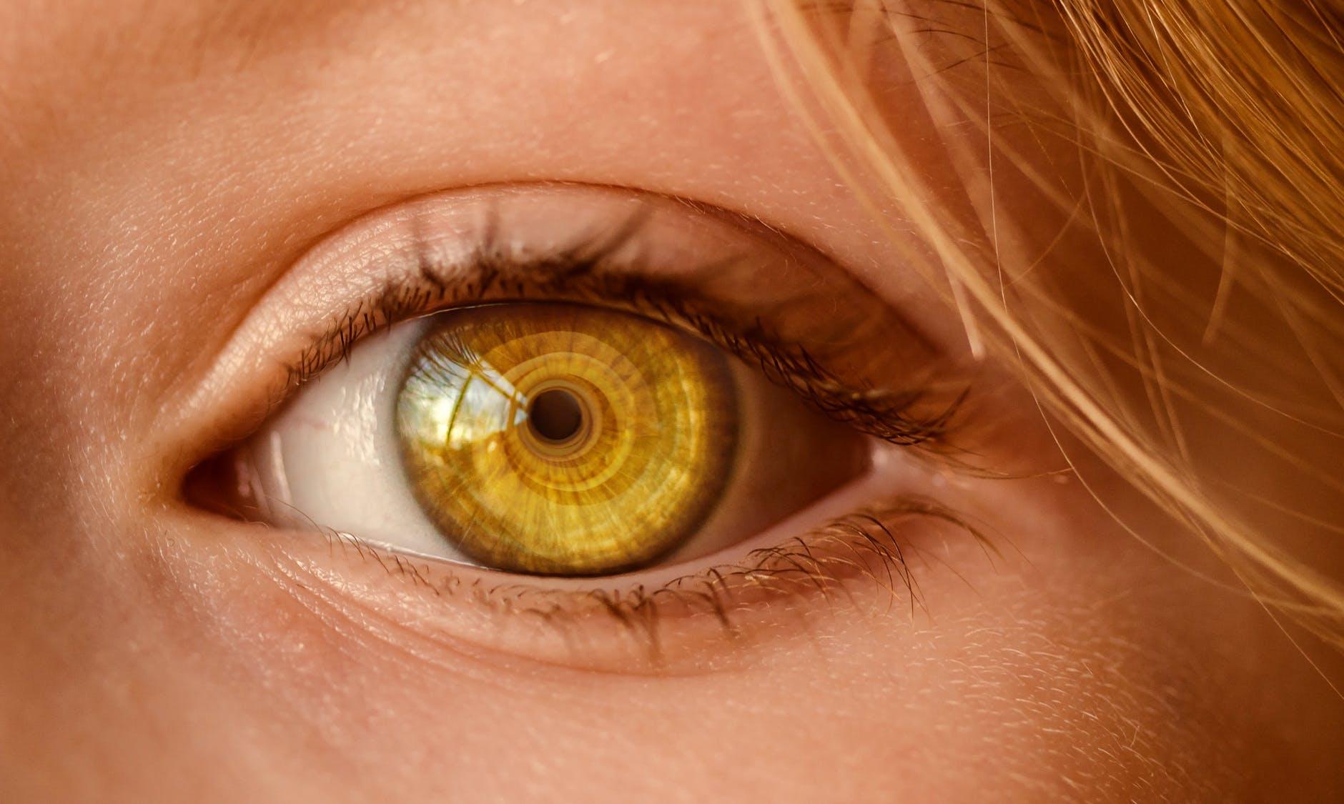 Privacy dei Dati Biometrici: impronte digitali, riconoscimento facciale e scansione dell'iride